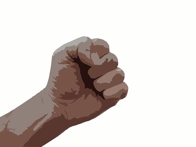 fist-295159_640